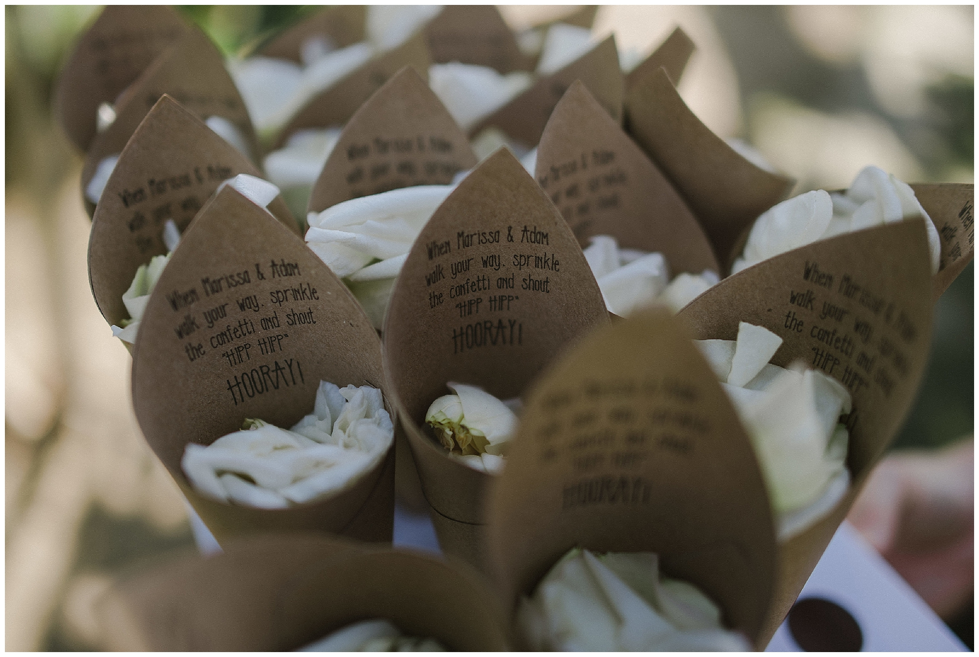 We love the detailed message for the guests to throw confetti on their beautiful Cabo wedding day!