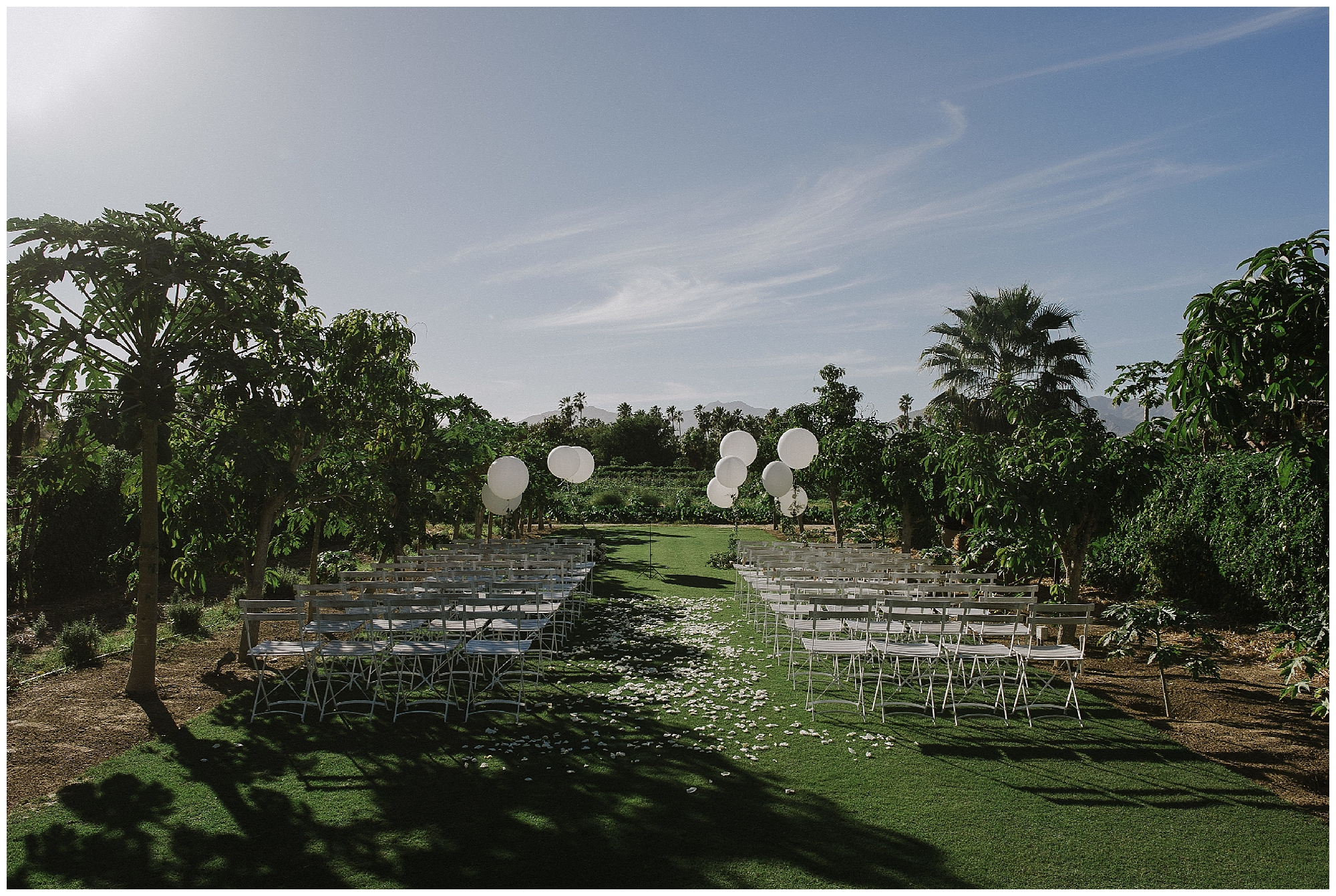 A stunning ceremony area at Flora Farms was the perfect setting for a beautiful Cabo wedding