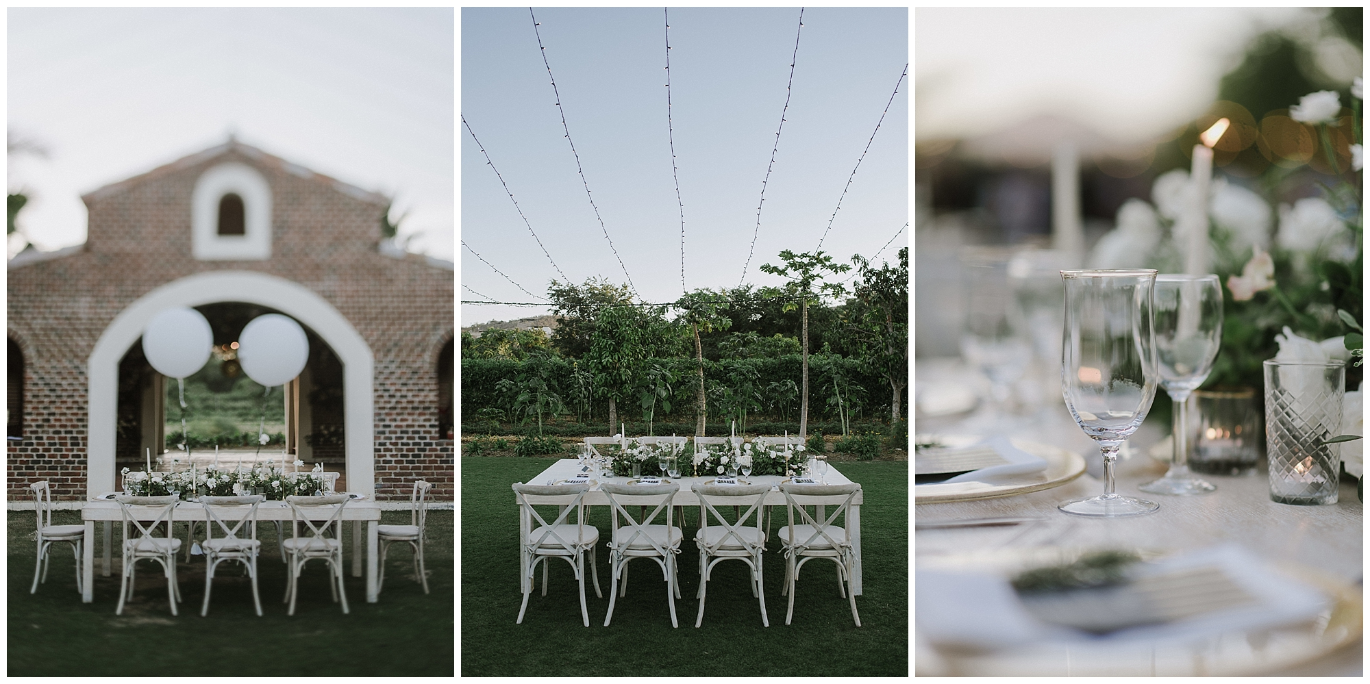 A beautiful Cabo wedding reception at Flora Farms