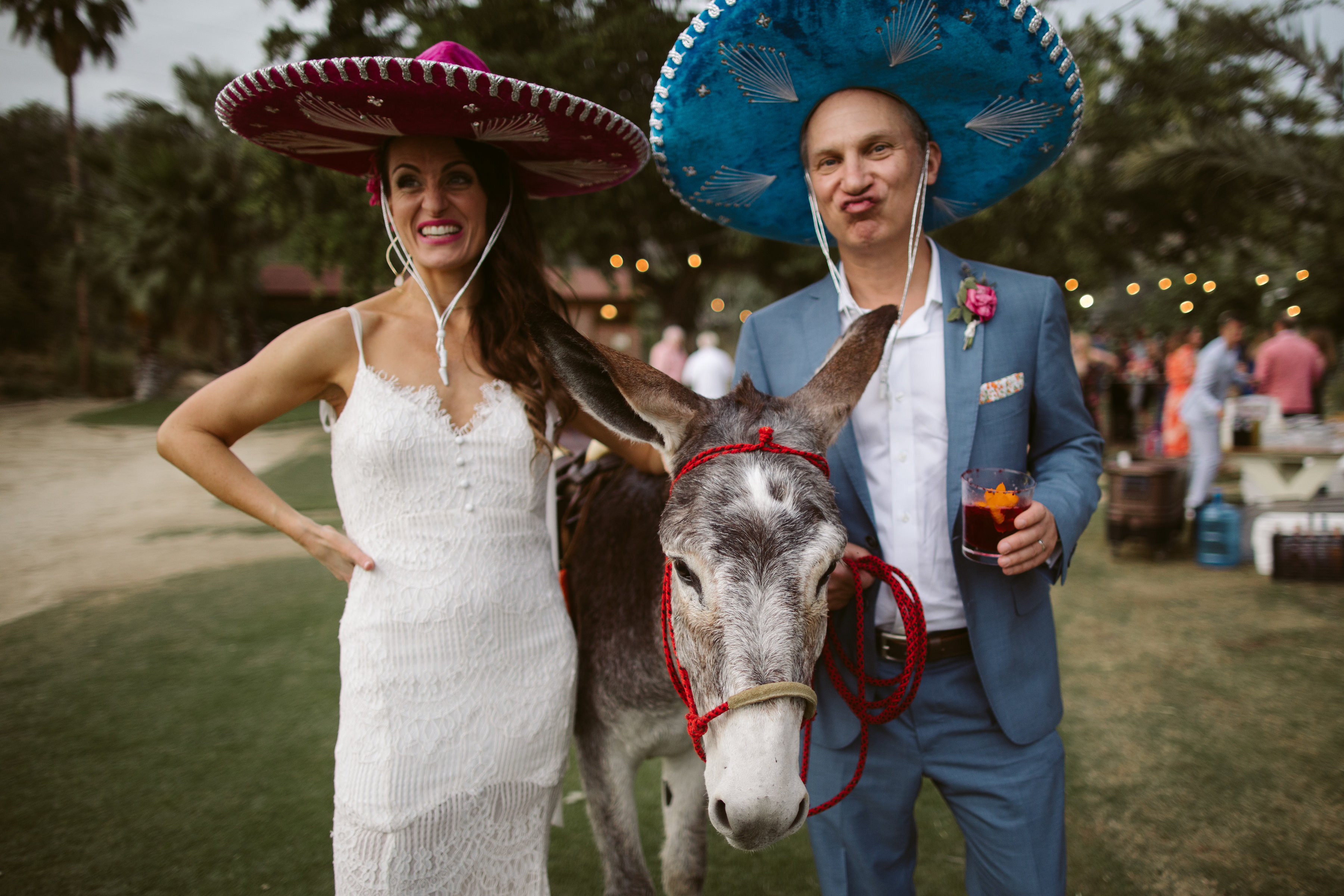 a friendly donkey arrives at a Mexican themed wedding