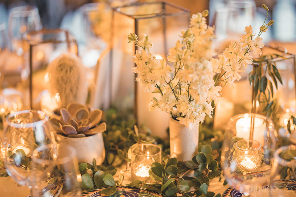 succulent table settings at Cabo del Sol wedding