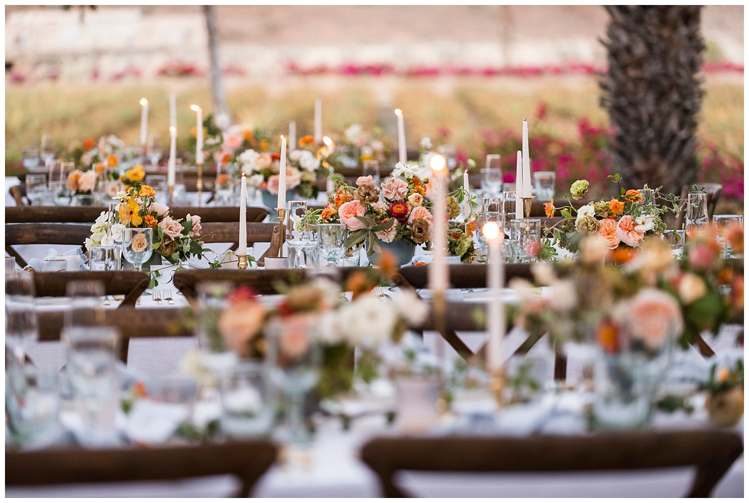 table settings at wedding in Todos Santos